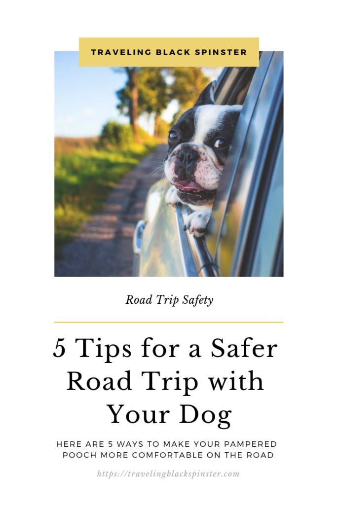 road trip with your dog featured image